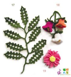 Various flowers and diagrams