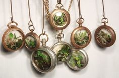 Upcycled pocket watch miniature garden