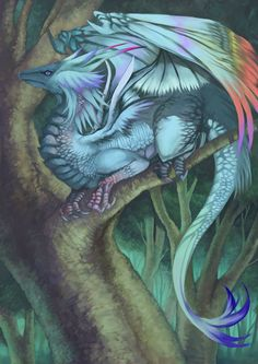 [Monster] Monster second bomb - dragon painting - Teaching Digest - Iron haughty - XILIYA