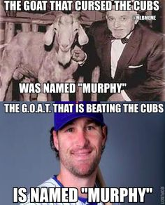 The goat that cursed the #cubs was named... murphy? coincidence? #mets. h/t @joelsherman1 - scoopnest.com
