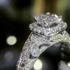 All you need is love! But a diamond engagement ring from the Peter Lam collection wouldn't hurt. Robbins Brothers Sku: 0408173