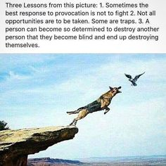 """my homie Tim just sent this to me. he said """"I don't know why, but I felt I should send this your way, Broms..."""" thing is, it's insanely fitting in my Life right now, and I wanted to share it with some of you who may need it today too. stay focused. stick to your vision. do not allow for distractions to goad you from your path. we are champions. much Love y'all. have a great week!!! ✨ #BromsThePoet #TheUniverseHasMyBack"""