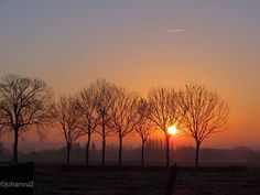 Het landschap op een heldere winterdag! #naturephotography #nature_perfection #trees #landscape #winter #belgium #february #sunrise_sunsets_aroundworld #sunrise #paesaggio #alba #cielo #luzdosol #skylovers #niebo #zimowy #wschódsłońca #himmel #sonnenaufgang #hiver #amanecer #invierno #nascerdosol #naturelovers #paisagem