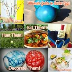 Ultimate Guide to Easter Eggs via http://typeaparent.com
