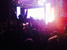 Bassnectar True Music Festival, Phoenix AZ