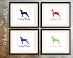 Doberman Pinscher - Breed Collection - Digital Download Printable - Frameable 8x10 Watercolor Collection