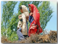 Young girls - Northern Pakistan.