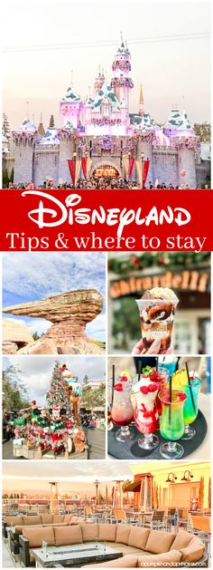 Disneyland Tips: whe