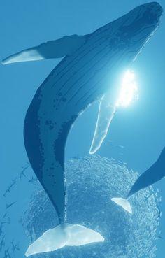 Abzu screenshot Beautiful Sea Creatures, Wale, Sea Art, Ocean Creatures, Blue Whale, Pretty Art, Ocean Life, Marine Life, Cutest Animals
