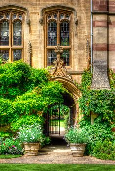 College Garden - Oxford, England by Yhun Suarez