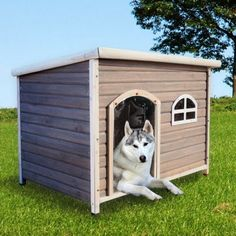 Royal Pet Spotty XL Insulated Flat Roof Dog House Contemporary Pet  Accessories