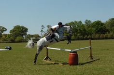 Conquer Corner Fences on Cross Country with Amy Tryon