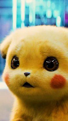 Pikachu Cat, Pikachu Drawing, Cute Pikachu, Baby Animals Super Cute, Cute Baby Dogs, Cute Little Animals, Cute Cartoon Pictures, Baby Animals Pictures, Cute Animal Pictures