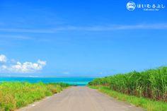 小浜港の坂を登って、振り返ると真っ青な海と八重山の島々を一望できるビューポイント! 奥に見える緑の島が竹富島。その左側に見える白い島は石垣市内の建物です。