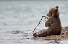 Z' e fais comme les humains! Z'e pêche!!