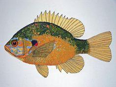 sunfish art | Sunfish South Usa Painting by Don Seago - Sunfish South Usa Fine Art ...