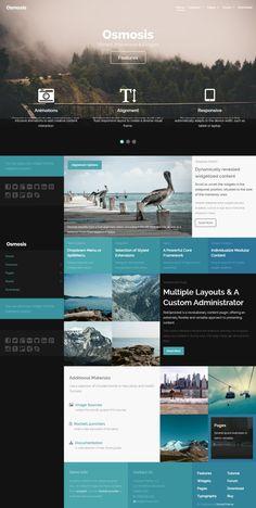 Infographic Tutorial infographic tutorials point : image portfolio grid infographic   WEB inspiration - WP, Joomla ...