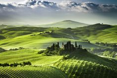Sunrise over farm of olive groves and vineyards in Tuscany. (Gettystock) Provided by The Huffington ...