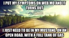 Truth, full tank of gas headed to the Mountains few days off work please Mustang Girl, 2015 Mustang, Ford Mustang, Car Memes, Car Humor, Mustang Humor, Truck Mechanic, My Lil Pony, Pony Rides