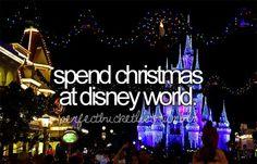 spend Christmas at disneyworld. Hopefully this will happen soon! :)
