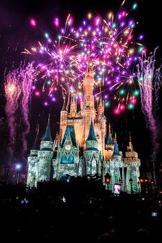 Keys to the Kingdom Tour - Walt Disney World   Plain Chicken
