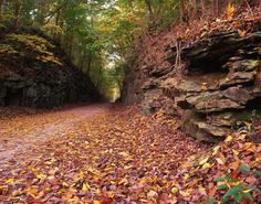 Katy Trail, Missouri.  A 237 mile bike path along the old Missouri-Kansas-Texas rail line.