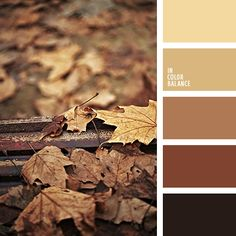 The palette of colors based on a combination of late autumn. The color scheme of faded foliage - perfect for classic autumn wardrobe. Combining elegance and practicality - the best of this set of colors.  Browns are always associated with reliability and stability, so that the coloring can be applied in the design office, rooms for business