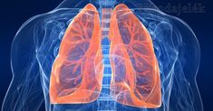 Smoking Lungs, Lung Cancer Treatment, Trouble Swallowing, Anti Oxidant Foods, Asthma Relief, Cancer Fighting Foods, Types Of Cancers, Lunges, Health