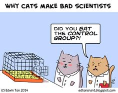 4 Adventurous Clever Hacks: Sphynx Cat Names cat funny art.All About Cat Facts big cat amazing photos. Funny Cartoons, Funny Comics, Crazy Cat Lady, Crazy Cats, Funny Babies, Funny Dogs, It's Funny, Funny Art, Hilarious