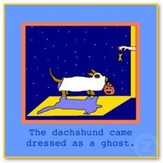 doxie at Halloween