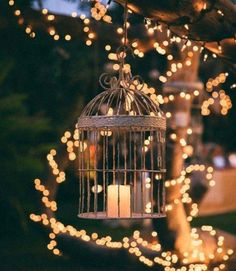 trendy garden decoration ideas summer beautiful garden is part of Fairy lights garden -