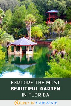 Cedar Lakes Woods and Gardens in Williston, Florida is the perfect day trip destination for nature lovers. It is absolutely beautiful with bridges, ponds, waterfalls, and wildlife. Add this to your bucket list!