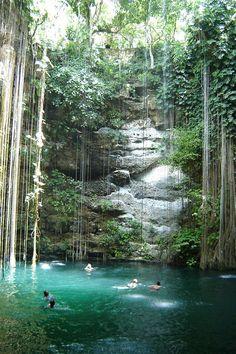 """Cenote à côté de coba au Mexique → """" Grand Cenote """""""