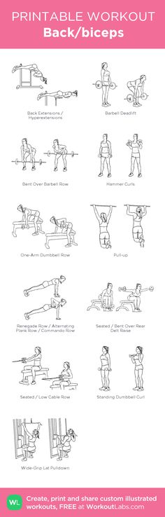 Back/biceps: my visual workout created at WorkoutLabs.com • Click through to customize and download as a FREE PDF! #customworkout