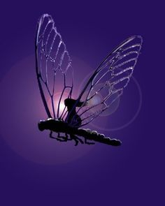 Flying on a Dragonfly in the Purple Night - In China the dragonfly is linked with prosperity, good luck and harmony. In Japan the Samurai use the dragonfly as a symbol of agility, power and victory. Dragonfly Art, Dragonfly Tattoo, Dragonfly Meaning, Dragonfly Quotes, Fairy Land, Fairy Tales, Fantasy World, Fantasy Art, Comic Art