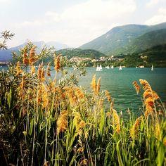 Where I grew up, Lago di Caldonazzo // TRENTINO