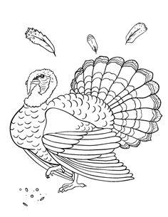 Printable black and white Thanksgiving border Use the