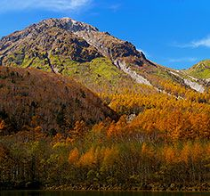 """KAMIKOCHI One of the most scenic spot in Japan. Feature vast virgin forests of birch trees and Japanese larch trees.  Shinjuku Station - JR Chuo Honsen Limited Express """"Azusa"""" (2hours 40minutes) - Matsumoto Station"""