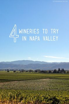 A Day Trip to Napa Valley California (Updated: 5 Wineries You Must Visit in Napa) // localadventurer.com
