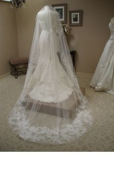 Vera Wang Audrey Lace Veil wedding-planning