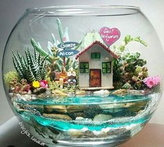 Crafts to make Cute Crafts, Crafts To Make, Crafts For Kids, Diy Crafts, Beach Fairy Garden, Air Plant Terrarium, Miniature Fairy Gardens, Garden Crafts, Craft Projects