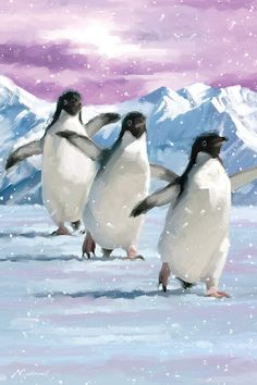 Penguins Canvas Artwork by The Macneil Studio Penguin Watercolor, Watercolor Paintings Of Animals, Watercolor Art, Bird Artwork, Canvas Artwork, Canvas Art Prints, Penguin Images, Penguin Art, Winter Painting