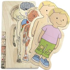 Your Body Layer Puzzle on www.amightygirl.com