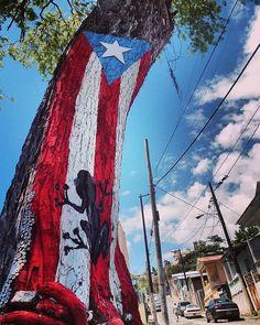 📍Desde Ponce 🇵🇷 📸 atilesonly ⛔ #loves_puertorico 💥 Promociona tu Negocio Aquí 🔖 • • 📸 Seleccionada por : exy_angie • • ▶️ #lovespr #placepr ▶️ #Boricua #PuertoRico ▶️ #Mibandera787 #isladelencanto ▶️ #Puertoricolohacemejor • • ↘️ Páginas Familiares ↙️ ▶️ mibandera787 ▶️ hashtagflorida ▶️ lsm_shots ▶️ loves_united_states ••••••••••••••••••••••••••••••••• ( #📷 @loves_puertorico ) Puerto Rico Tattoo, Puerto Rican Flag, Puerto Ricans, Fair Grounds, United States, Culture, Instagram, Outdoor Decor, Travel
