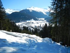 Best skis for seniors?: see news at silvertraveladvisor.com