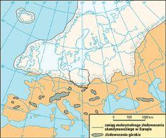 zlodowacenia Portal, Diagram, Times, Geology, Geography, Historia