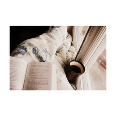 I Love Reading And Writing! ❤ liked on Polyvore featuring pictures, backgrounds, photos, images, pics and fillers