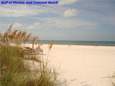 Siesta Key Beach, my fave! Siesta Key Beach, Vacation Rentals By Owner, Hampton Beach, Thing 1, Panama City Beach, Beach Condo, Romantic Travel, Beautiful Beaches, Florida Vacation