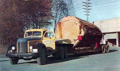 1948 International Logging Truck - Why did they do this to Nature...? They're criminals...