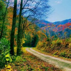 picture of beautiful nc places | North Carolina Fall Colors